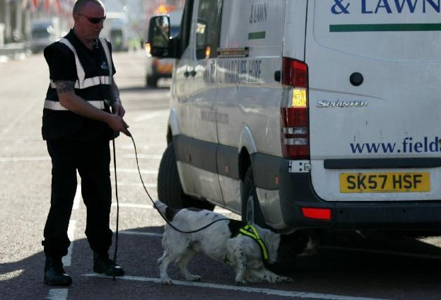 伦敦马拉松赛采用警犬与安检门等设备共同防御不法活动[图]